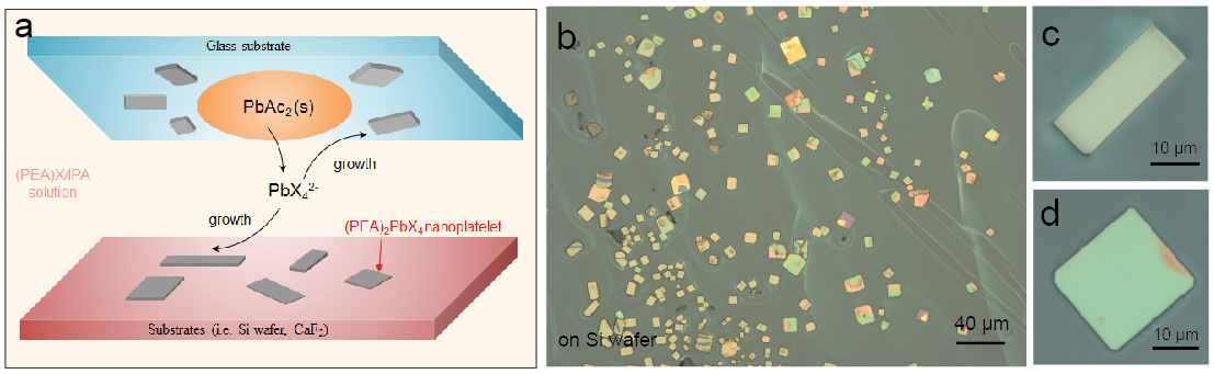 Perovskite Nanostructures for Optoelectronics and